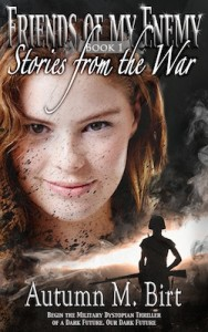 FofmeE-Stories-from-the-War-series-final-250